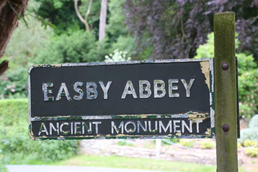 IMG_0879_easby