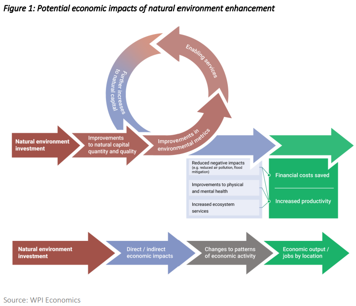 Diagram of potential economic impacts of natural environment enhancement